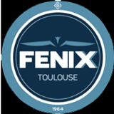 pour le mécénat logo de l'équipe de handball du fénix
